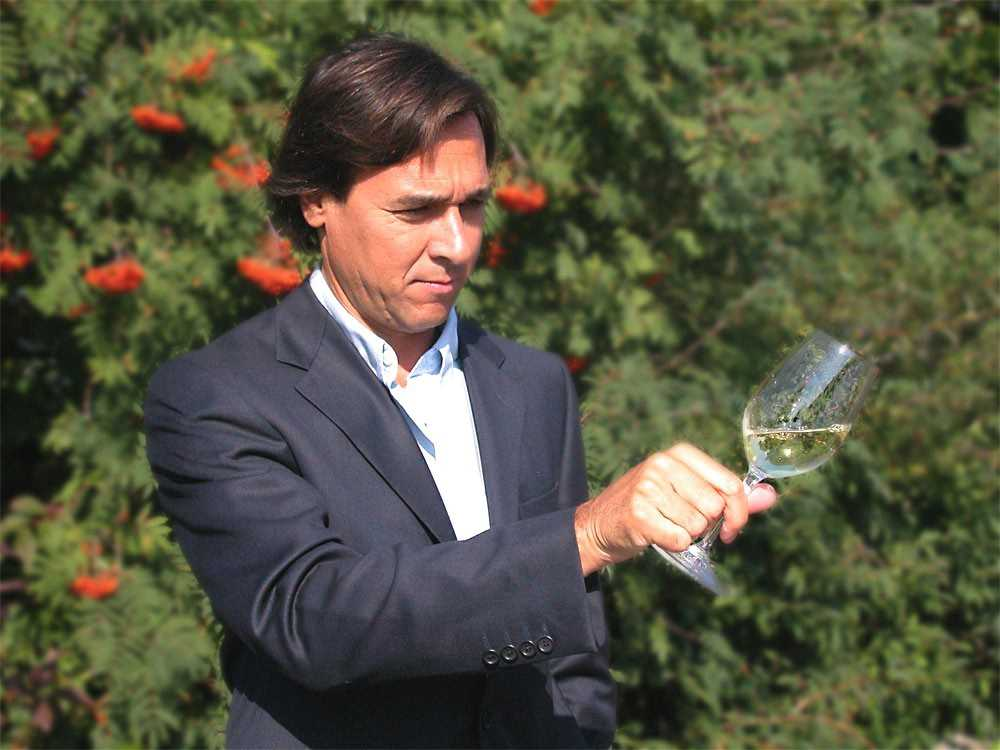 Pedro Araujo_Ameal