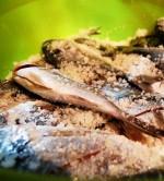 Peixe aquicultura