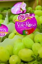 vale_da_rosa