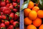 morangos_laranjas
