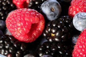 frutos_silvestres