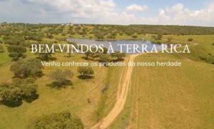 Terra Rica