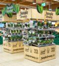 Jungle Greens Auchan Sintra (1)
