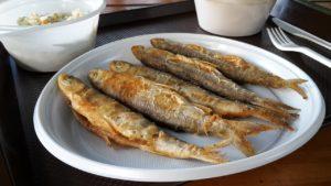 fish-4176085_1280