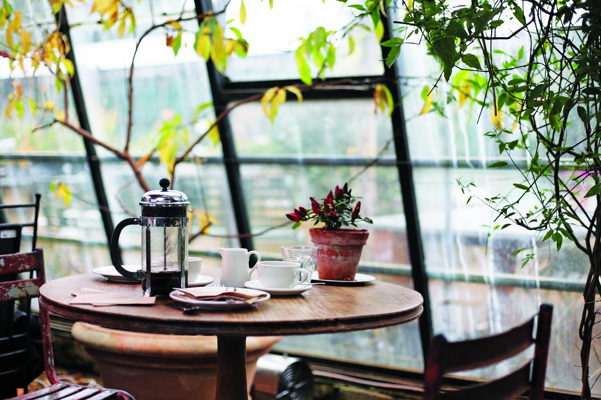 conservatory-1031494_1920