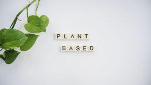 plant-based-4235884_1280