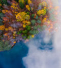 Foggy morning and autumn colors