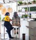 Estúdios de planificação_IKEA